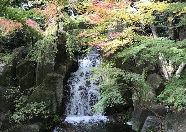 徳川園の滝