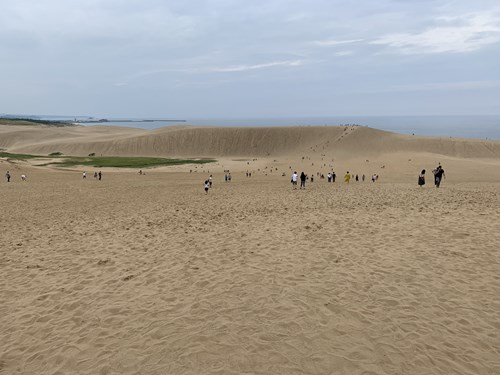 砂丘の様子