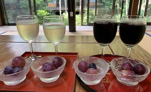 ブドウジュースとワイン