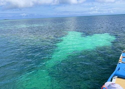 ハート型の岩礁