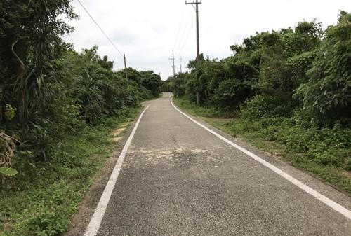 竹富島の道②