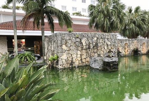 ホテル前の池